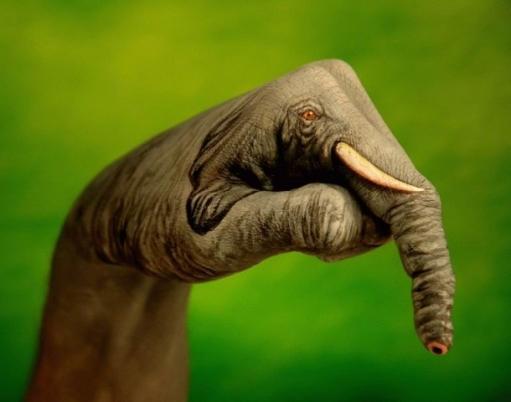 Во что можно превратить руки человека?