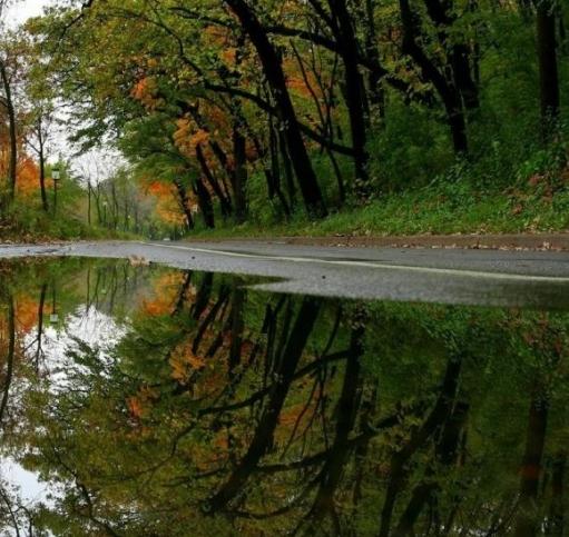 За океаном уже осень)))
