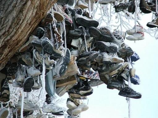 Нехватает денег на обувь? :D