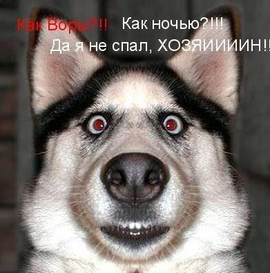http://www.port2all.dp.ua/uploads/posts/2008-12/1228942646_1.jpg