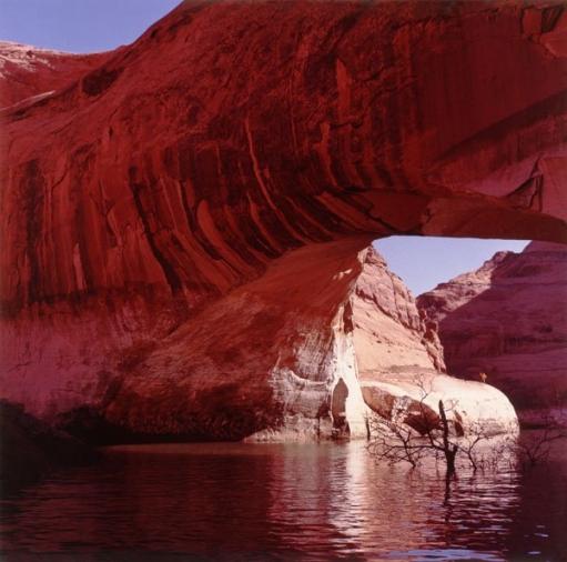 Природные мосты (очень красивые фото)