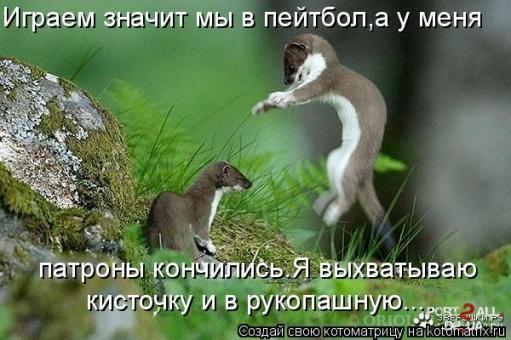 Подборка  прикольных фото животных с подписями (котоматриц) (Часть1)
