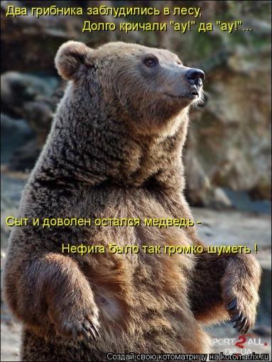 Веселящие фото животных)