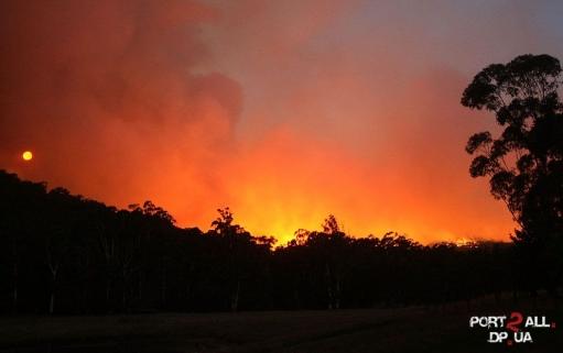 Ужасные пожары в Австралии