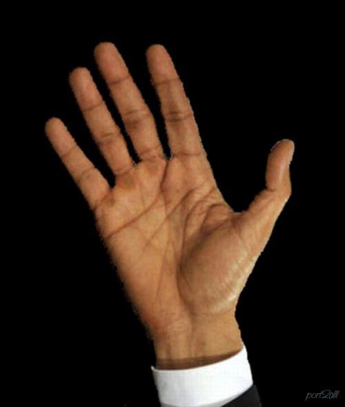 Увлекательная хиромантия: рука Обамы... » Port2all - информационно ...