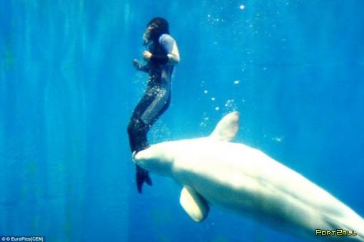 Дельфин Белуха спас дайвершу!