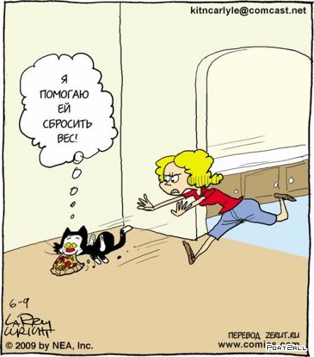 Прикольные мини-комиксы про заботливого кота