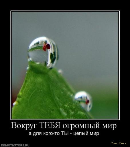 Подборка четких демотиваторов =)
