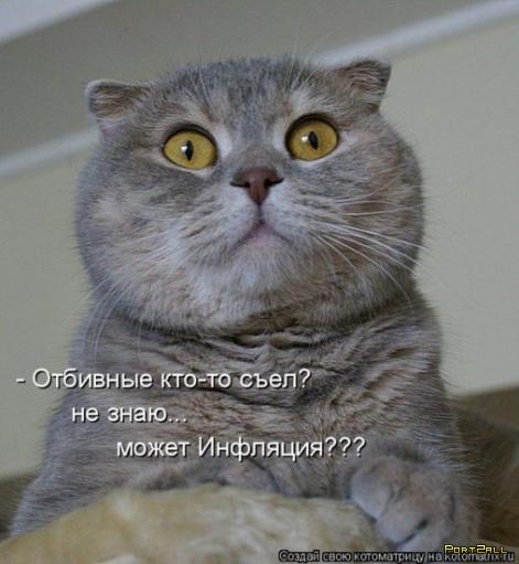 Позитивыне фото животных с подписями :]