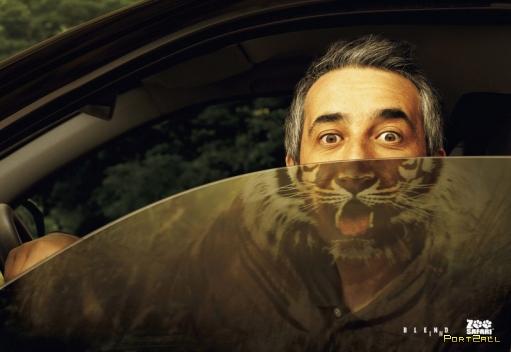 Креативная реклама зоопарка. Креативная реклама сафари.