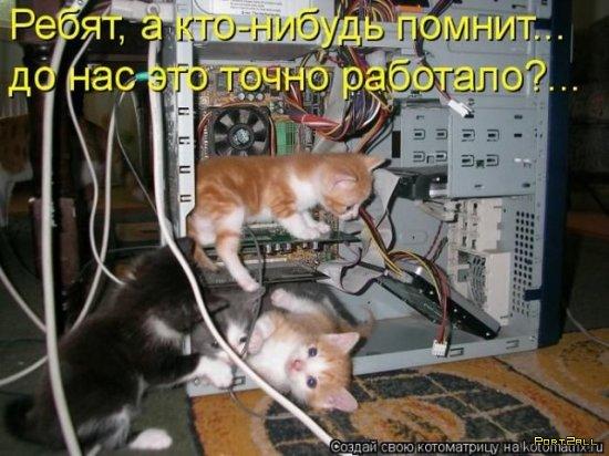 Фотографии животных с прикольными подписями! :D