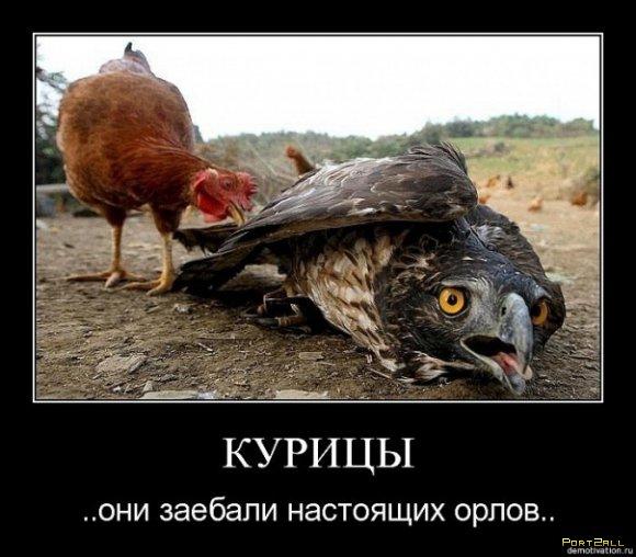 Подборка приколов из Twitter #twiprikol №9