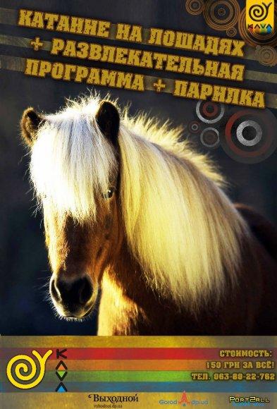 Активный отдых с KAVA (2.04-8.04) Квадрациклы, КAVA - MAFIA, Катание на лошадях