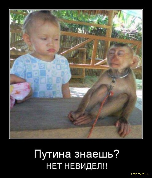 Отборные демотиваторы.