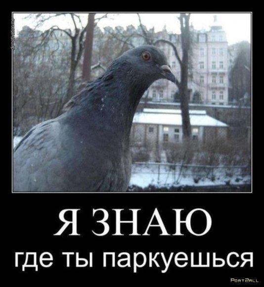 Подборка приколов из Twitter #twiprikol №31
