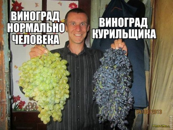Подборка приколов из Twitter #twiprikol №64