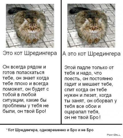 Подборка приколов из Twitter #twiprikol №80