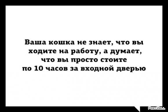 Подборка приколов из Twitter #twiprikol №90