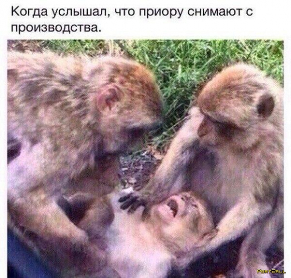 Подборка приколов из Twitter #twiprikol №102 Летняя халтура...